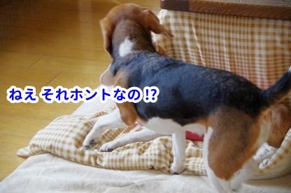 やすみ 5
