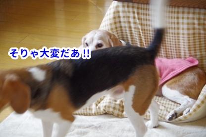 やすみ 3