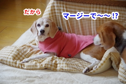 やすみ 7