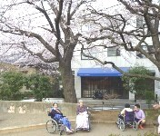 160331お花見 (1)