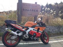 CBR250RR 茶臼山