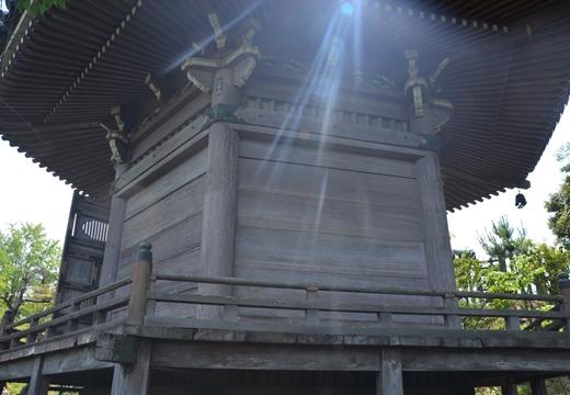 所沢・増上寺 (255)_R