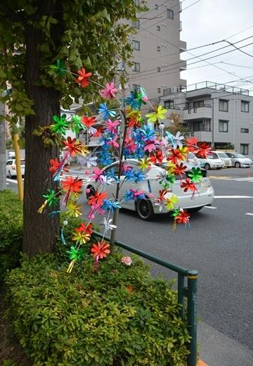 綾瀬20151107 (281)_R