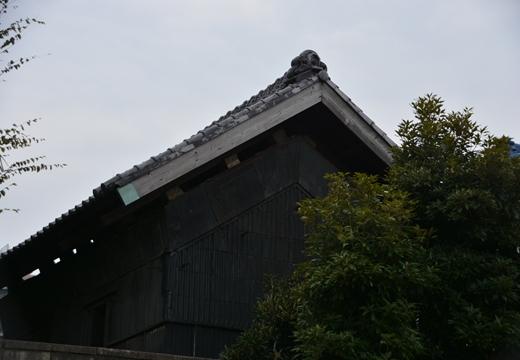 綾瀬20151107 (265)_R