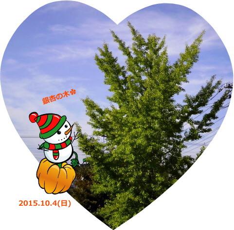 花ブ20151004-1