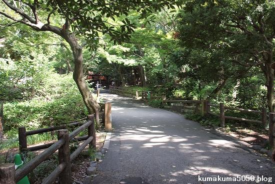 上野動物園_3