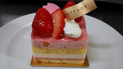 アンテノール桜ケーキ (2)