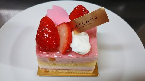 アンテノール桜ケーキ (5)