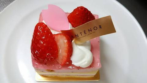 アンテノール桜ケーキ (6)