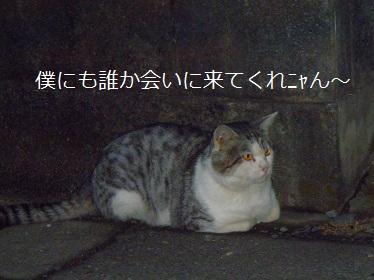PA180141.jpg