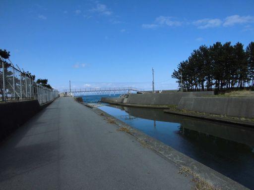 amedaka0321-2.jpg