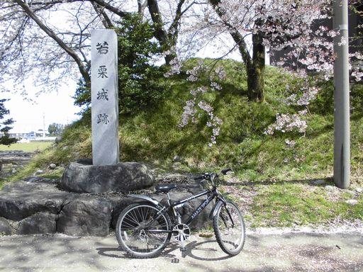 asakura0409-5.jpg