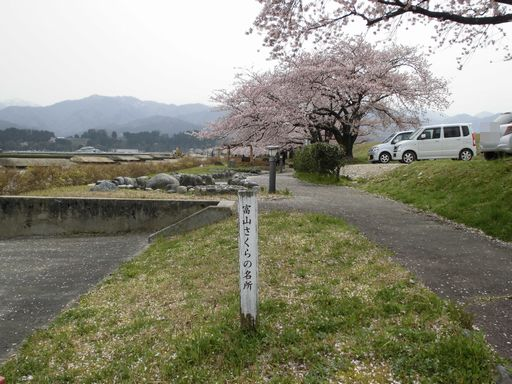 asakura0410-9.jpg