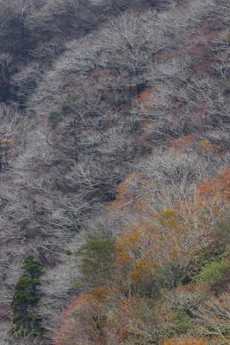 根子岳縦m995A8411 - バージョン 2