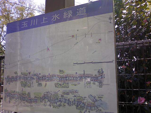 TS3J0250.jpg