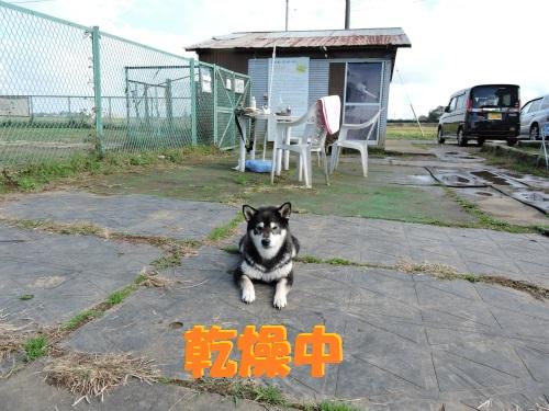 DSCN9125Blog.jpg