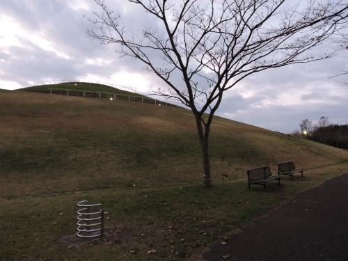 DSCN9604Blog.jpg
