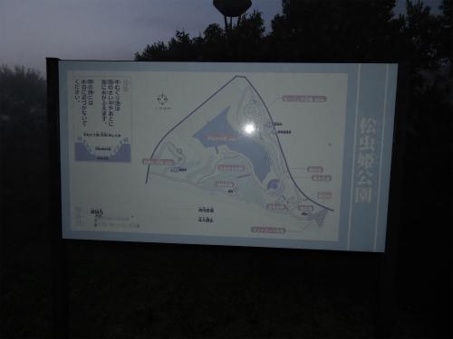 DSCN9889Blog.jpg