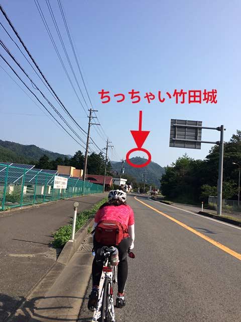 niho_3.jpg