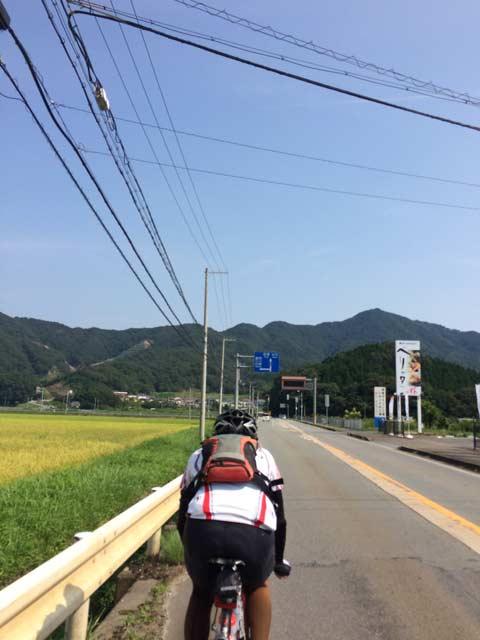 niho_8.jpg