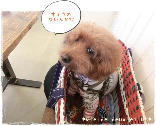 20160131blog5.jpg