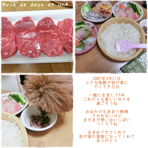 20160321blog1.jpg