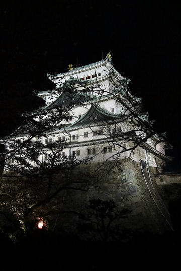 160403岩倉・名古屋城桜 068