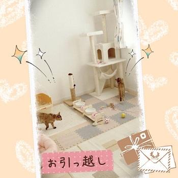 キティ&ミミィ_1235