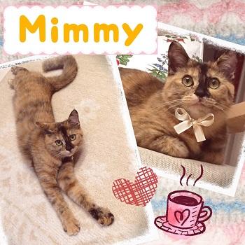 キティ&ミミィ_4313