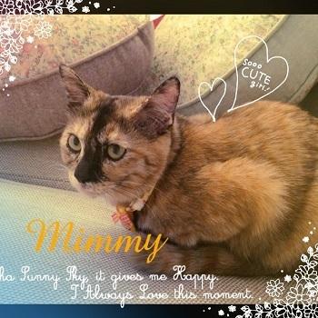 キティ&ミミィ_2670
