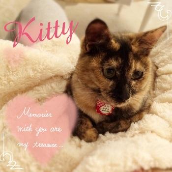 キティ&ミミィ_1640