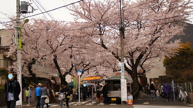 160402桜祭り⑫