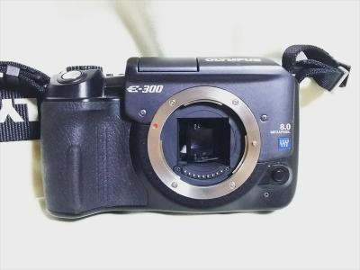 DSC_2200_R_R.jpg
