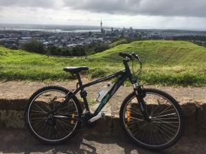 NZ173