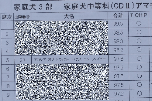 20151108 (11)