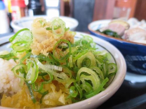丸亀製麺㉗ (5)_R