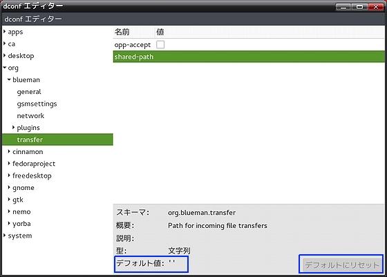 correction_buleman-error_dconf-editor.jpg