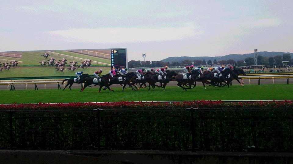 レース開始!