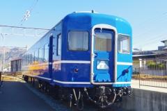 IMGP3102.jpg