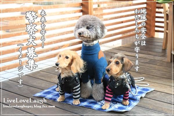IMG_7937ほんもく4-2
