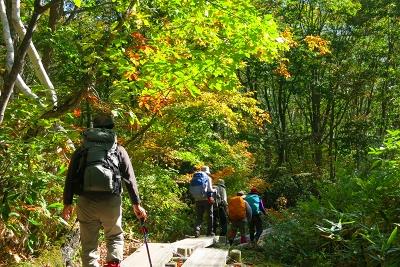 笹ケ峰登山口、ぼちぼち紅葉が始まっている