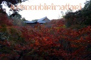 東福寺 紅葉2015