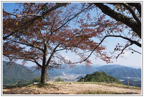 2015年10月19日 砥峰高原ツーリング (3)