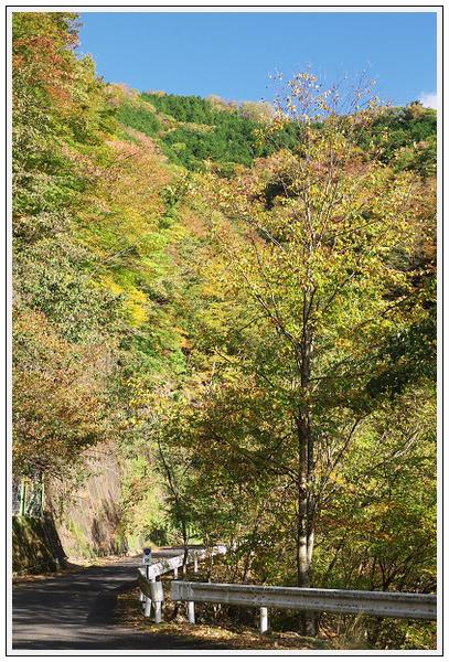 2015年10月27日 行者環林道 (7)