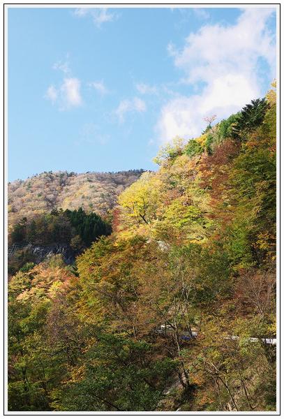 2015年10月27日 行者環林道 (12)