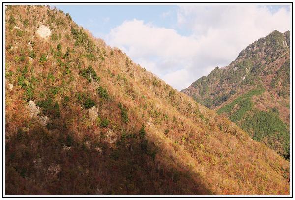 2015年10月27日 行者環林道 (16)