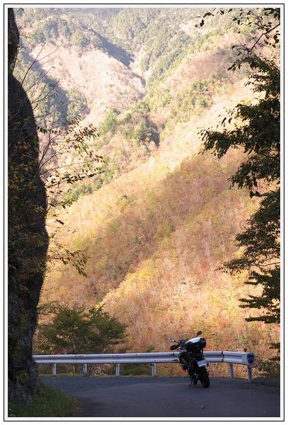 2015年10月27日 行者環林道 (17)