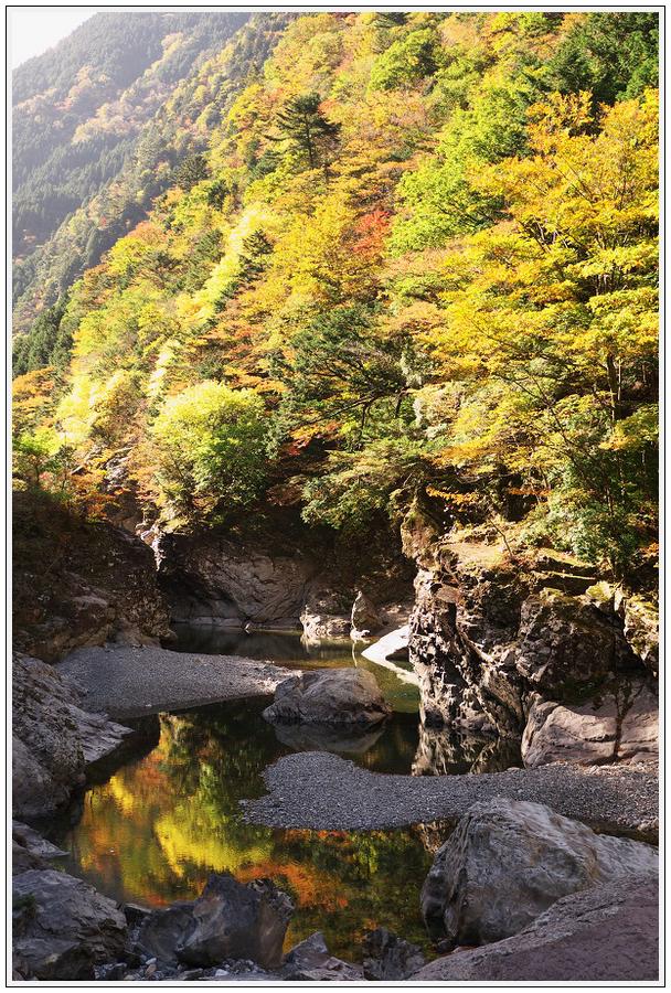 2015年10月27日 行者環林道 (26)