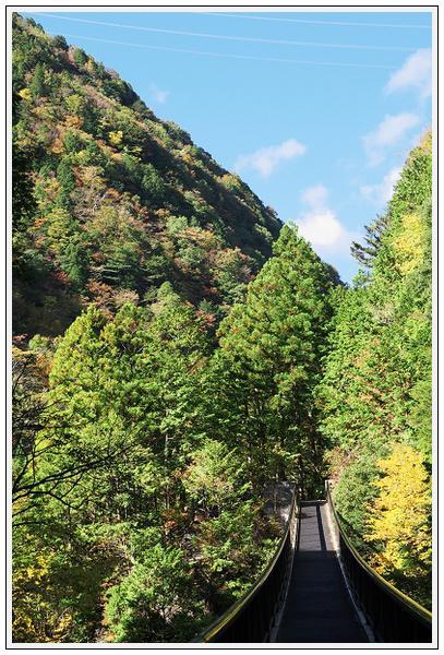 2015年10月27日 行者環林道 (29)