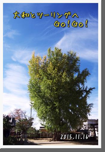 2015年11月16日 九度山・かつらぎツーリング (42)